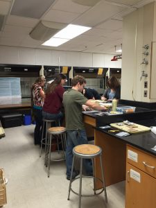 Students working in the OU Great Plains Archaeology Lab